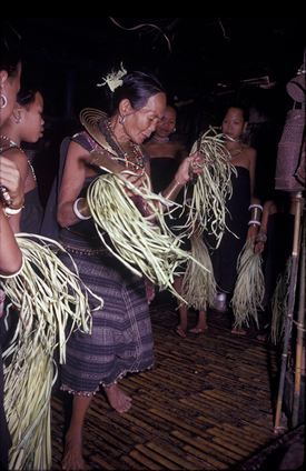 Ritual celebration in Borneo, photo taken on behalf of the Firebird Foundation, Phillips, Maine.